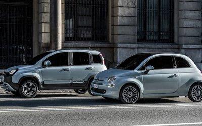 Fiat 500 e Panda presentano l ...