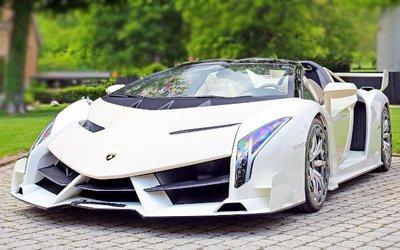 Lamborghini Veneno Roadster, 7 milioni di ...