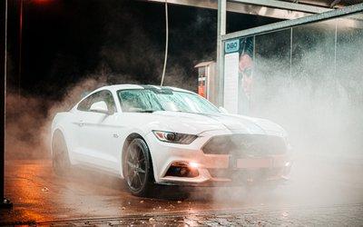 Mustang, la vettura sportiva più venduta ...