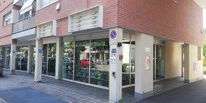 Rinomotor's